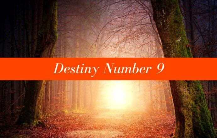 Destiny Number 9 - The Volunteer