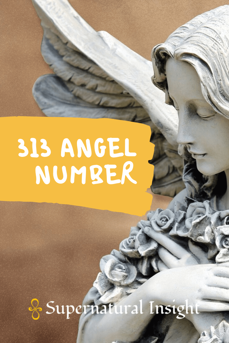 313 Angel Number